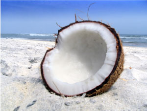 About Coconut Oil